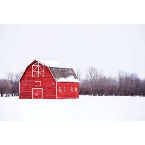 Bright Red Barn 24 x 36 Print